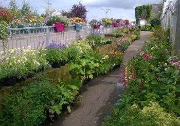 Welland Vale Garden Nursery